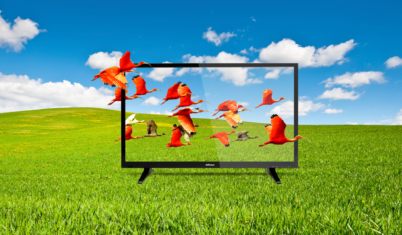 InFocus LED TVs now also in 40″ – exclusively on Flipkart