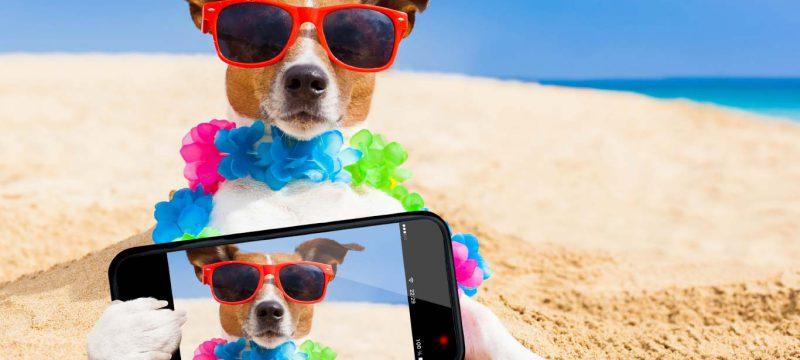 selfiesmartphones_mainbanner